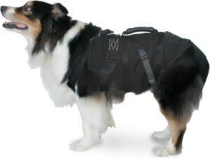 Uprząż wysokościowa dla psa